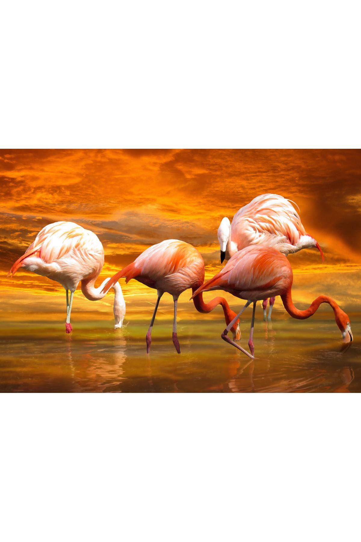 Flamingo Kanvas Tablo