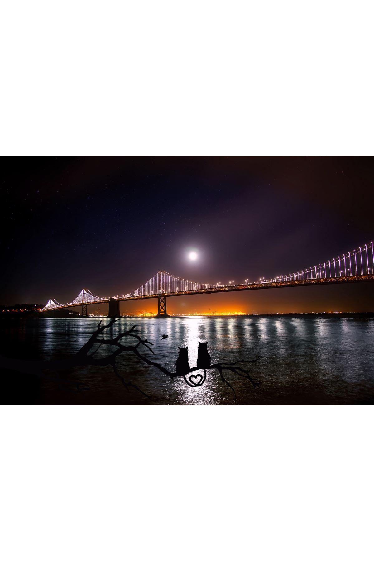 San Francisco Kanvas Tablo
