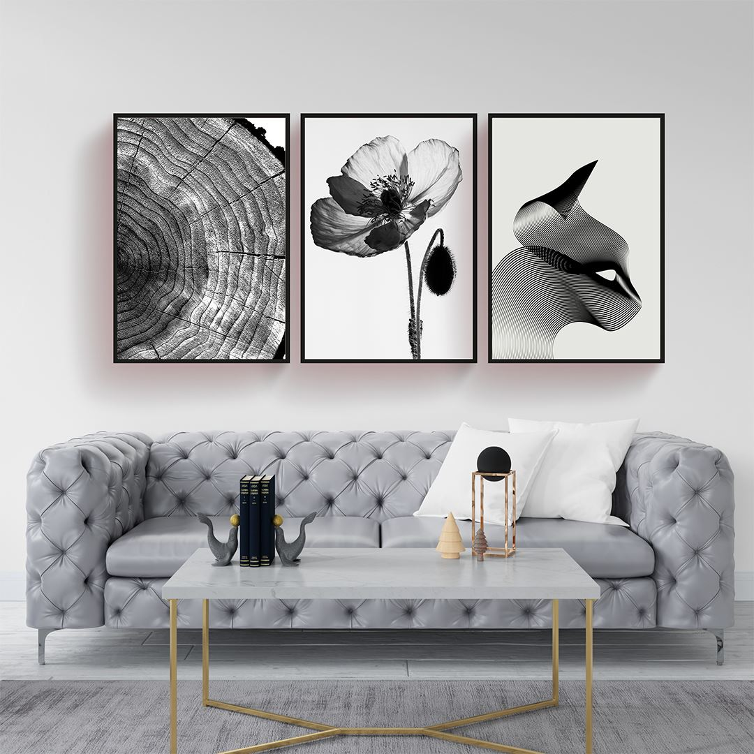 Black and White Canvas Set